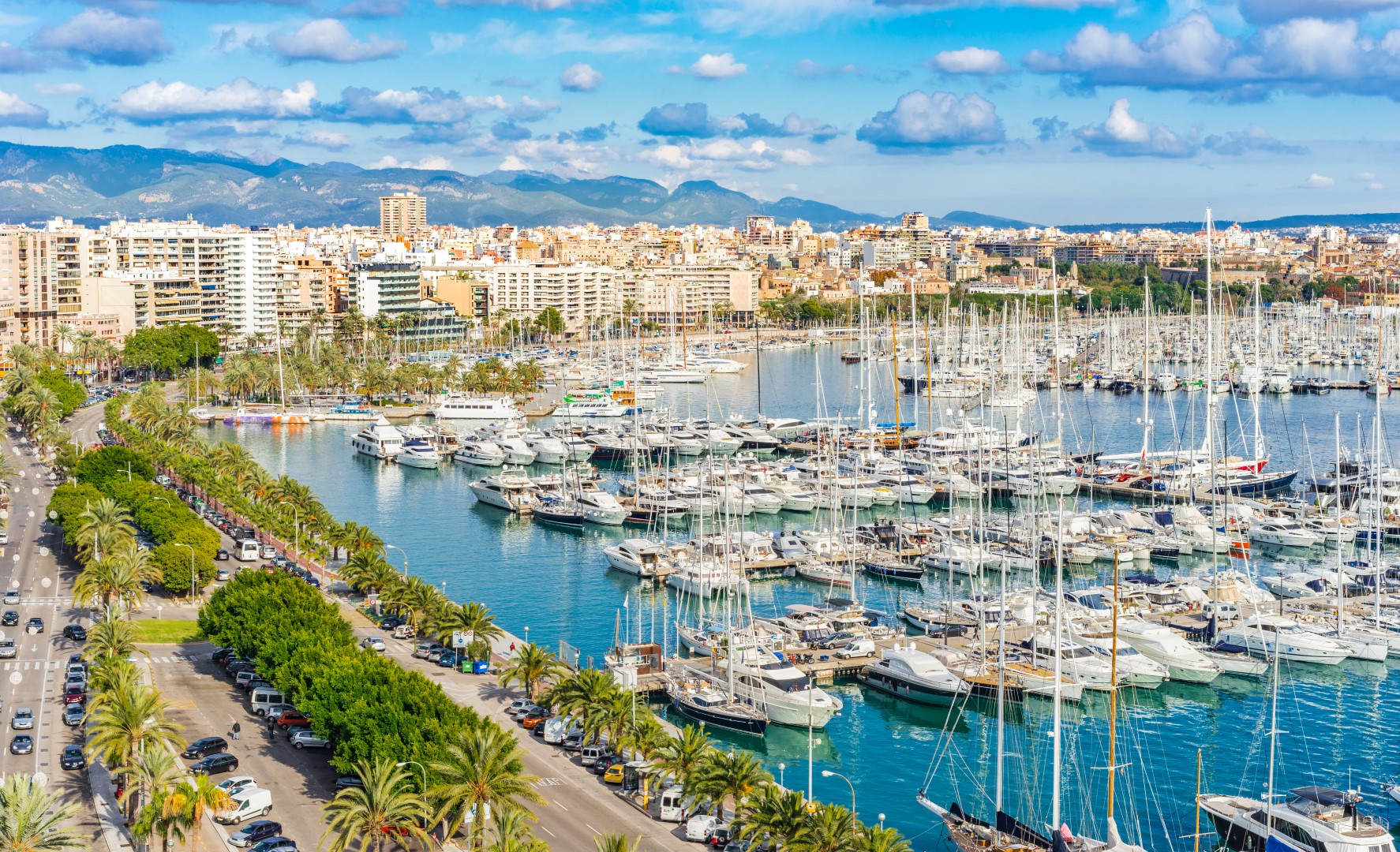 Club de Mar Marina Mallorca